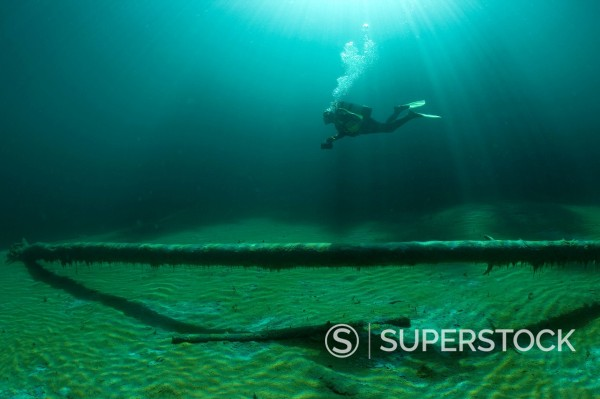 Scuba diver swimming over submerged tree trunks, Samaranger Lake, Tyrol, Austria, Europe : Stock Photo