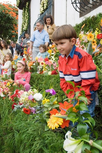 April flower festival, Praca do Municipio, children placing flowers into the wall of hope, Funchal, Madeira, Portugal, Europe : Stock Photo