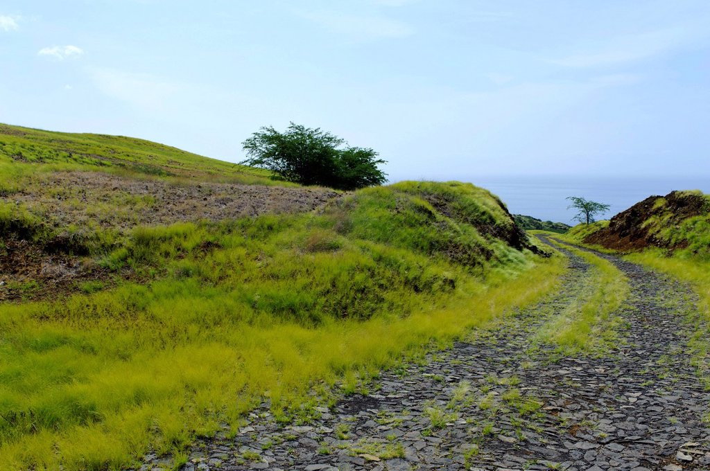 Stock Photo: 1848-699911 Landscape on the south coast, Fogo, Cape Verde, Africa