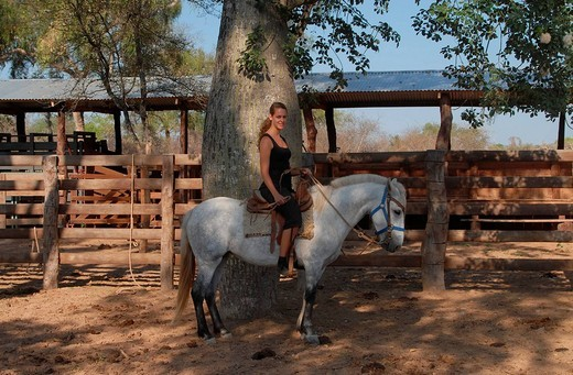 Young woman on a white horse at a corral on a Paraguayan farm, Gran Chaco, Paraguay, South America : Stock Photo