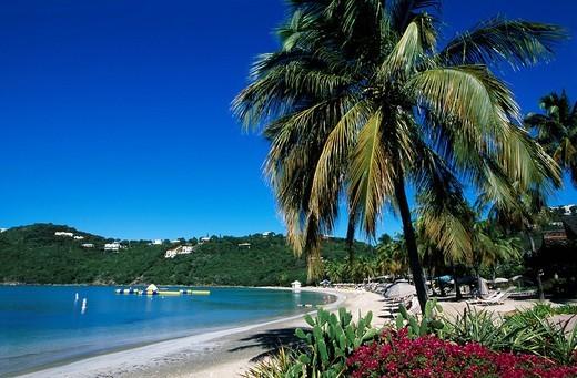 The Westin Resort, St. John Island, United States Virgin Islands, Caribbean : Stock Photo