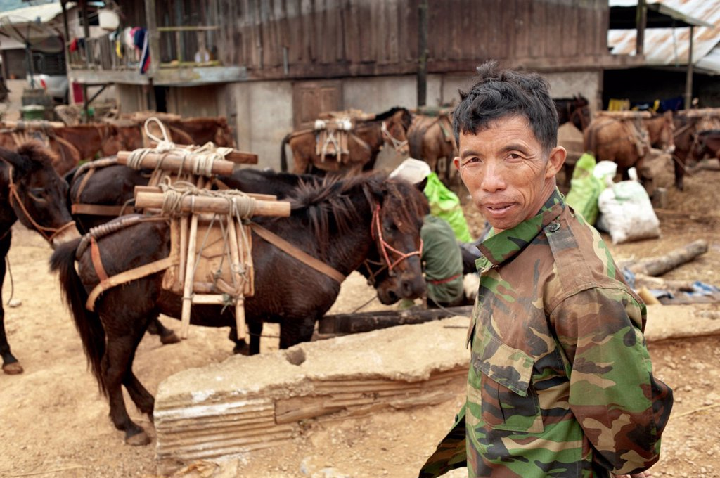 Palong hill tribe man with horses in Norlae village, northern Thailand, Asia : Stock Photo