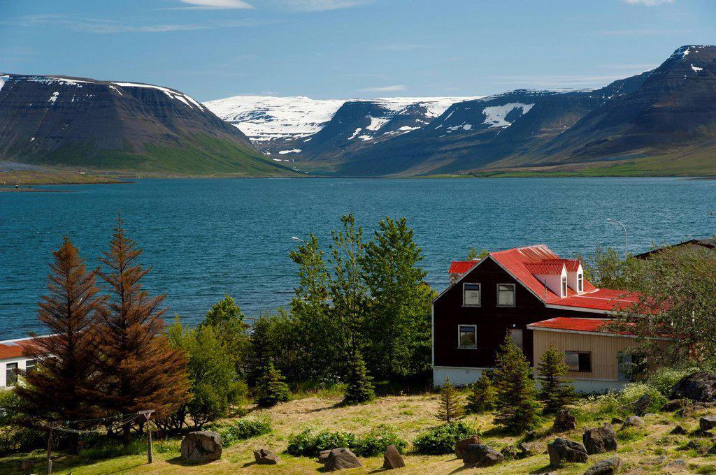 Stock Photo: 1848-705843 Wooden house, town of Þingeyri, Thingeyri, Dýrafjoerður, Dýrafjoerður fjord, Westfjords, Iceland, Europe