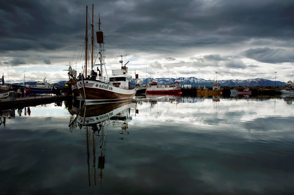 Stock Photo: 1848-706275 Whale watching boat in the port of Húsavík, Norðurland, Nordurland eystra, North_East Iceland, Iceland, Europe