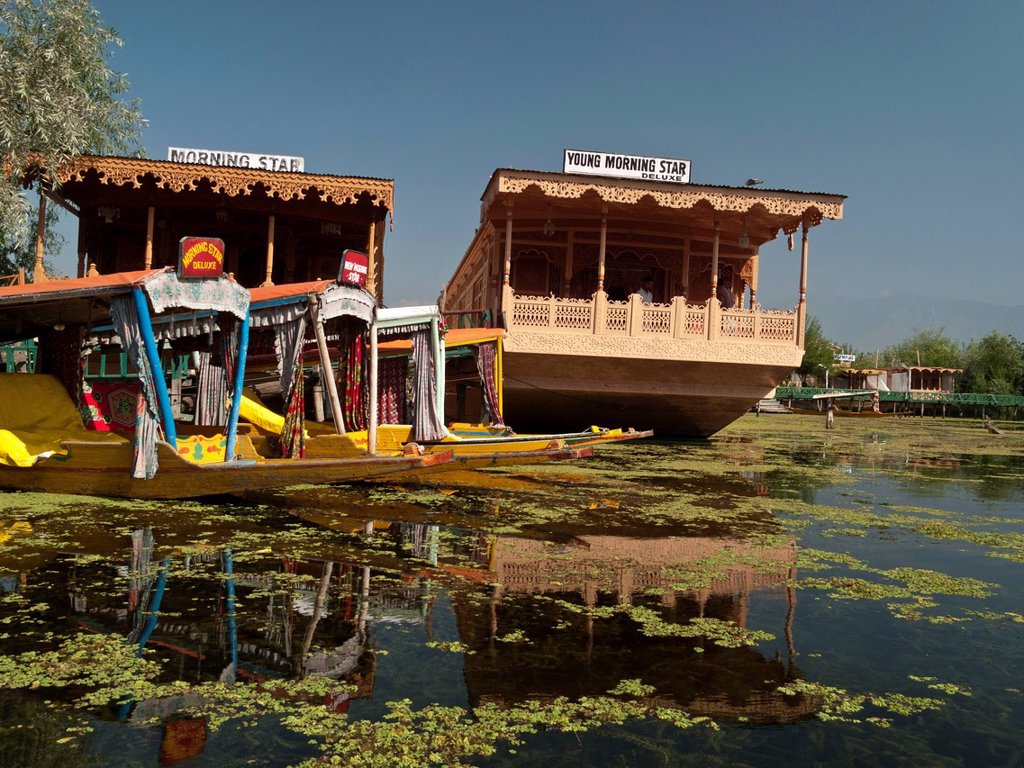 Stock Photo: 1848-708589 Houseboats on Dal Lake, popular to accomodate tourists, in Srinagar, Jammu and Kashmir, India, Asia