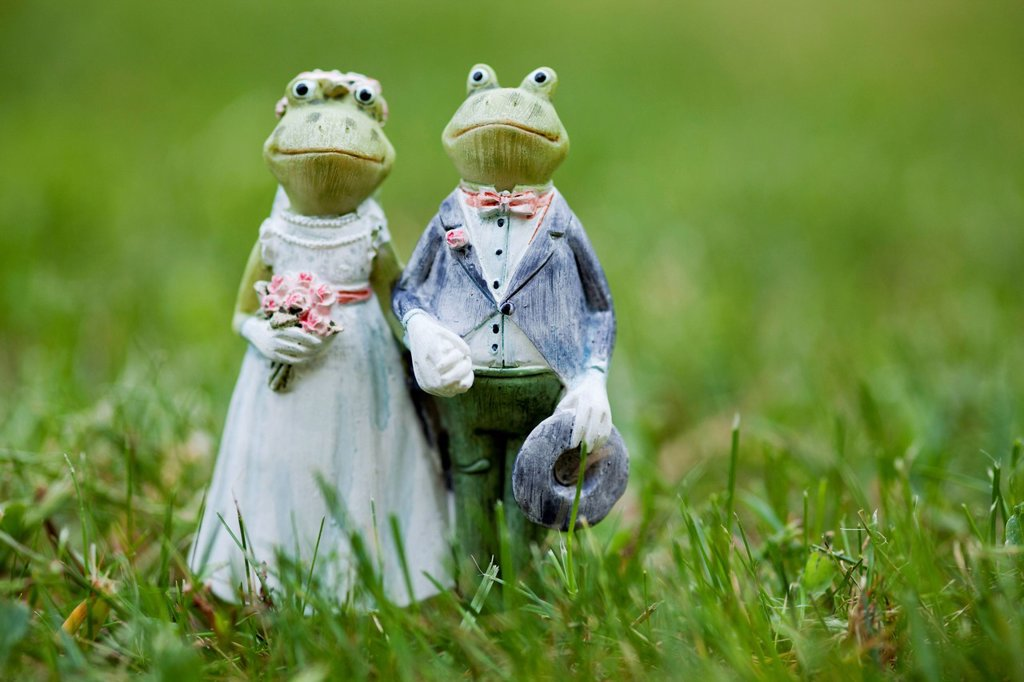 Stock Photo: 1848-708896 Frog figurines as wedding couple, in grass
