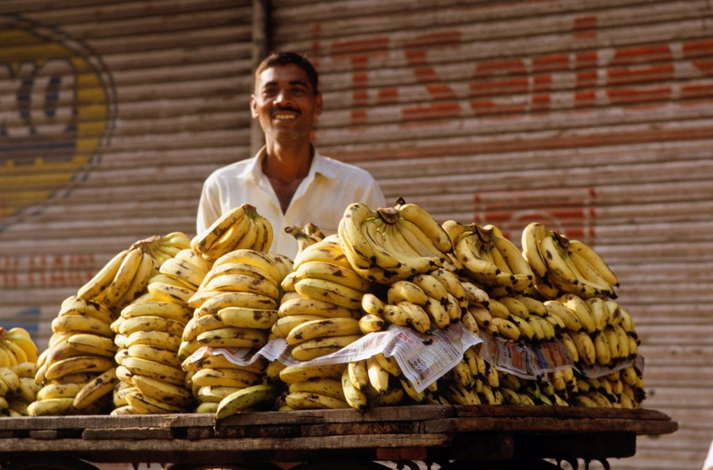 Stock Photo: 1848-709002 Street vendor selling bananas, New Delhi, India, Asia