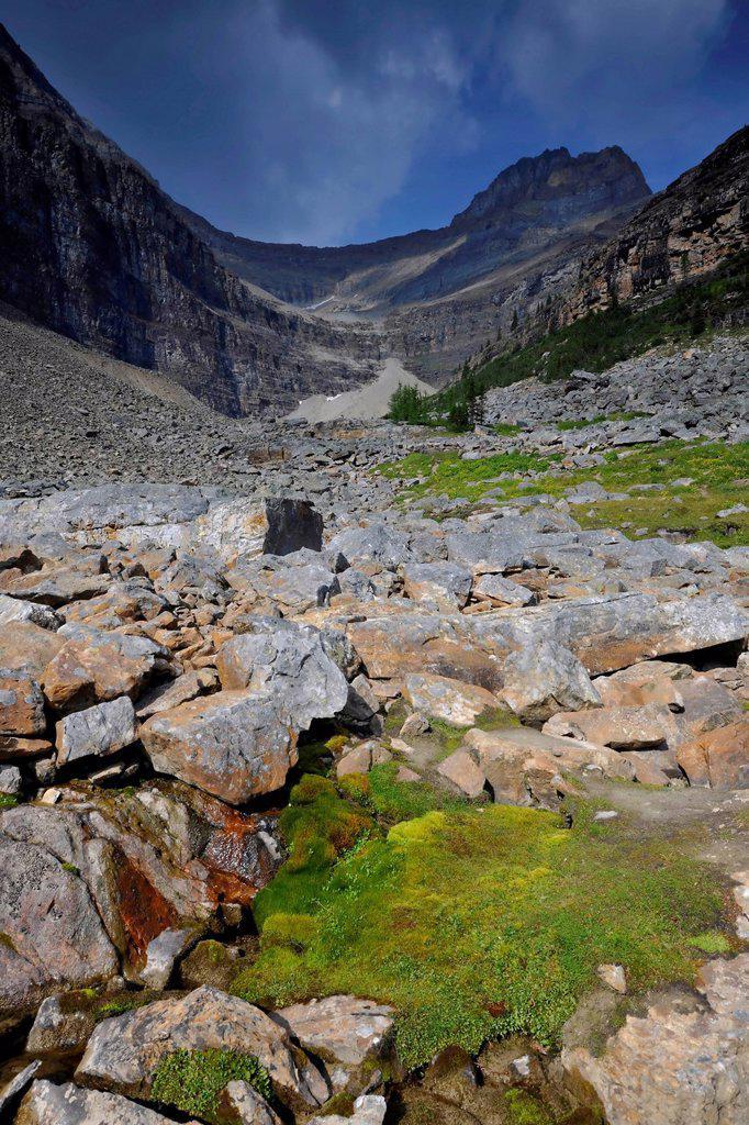 Lake Agnes, Mount Niblock, Banff National Park, Alberta, Canada : Stock Photo