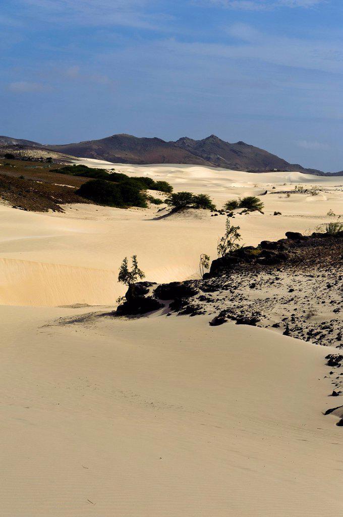Deserto Viana desert, Boa Vista, Cape Verde, Africa : Stock Photo