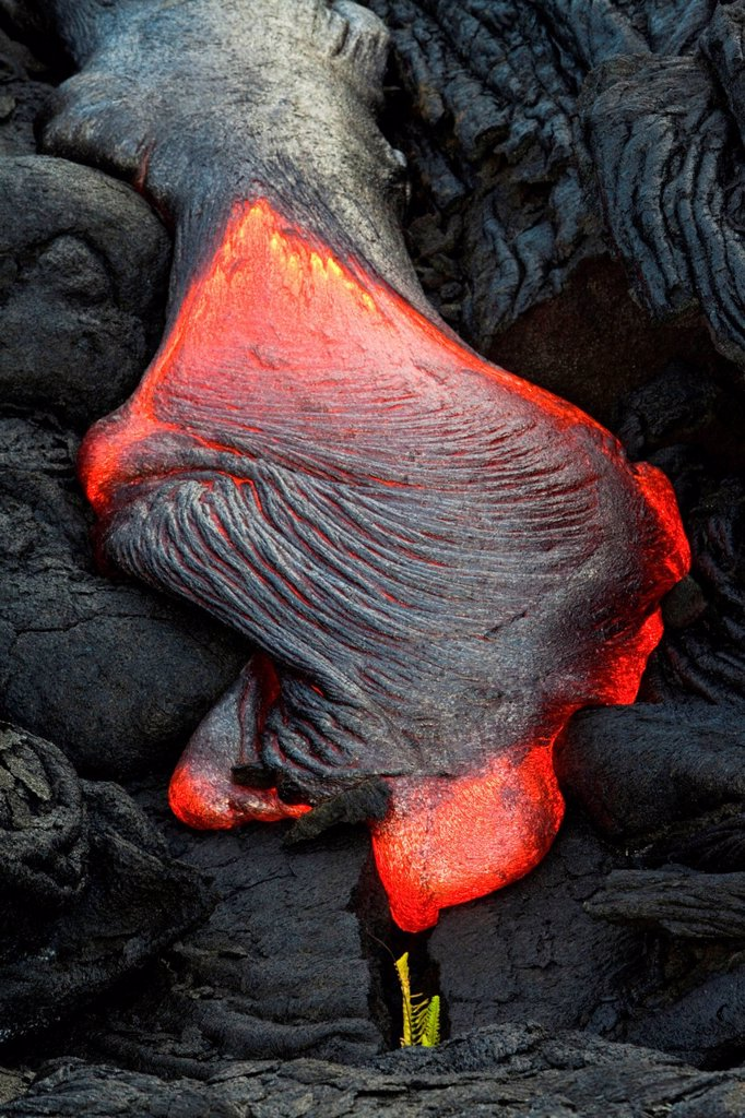 Viscous P&257,hoehoe lava flowing from rifts in the East Rift Zone towards the sea, lava field at the Kilauea shield volcano, Volcanoes National Park, Kalapana, Hawaii, USA : Stock Photo