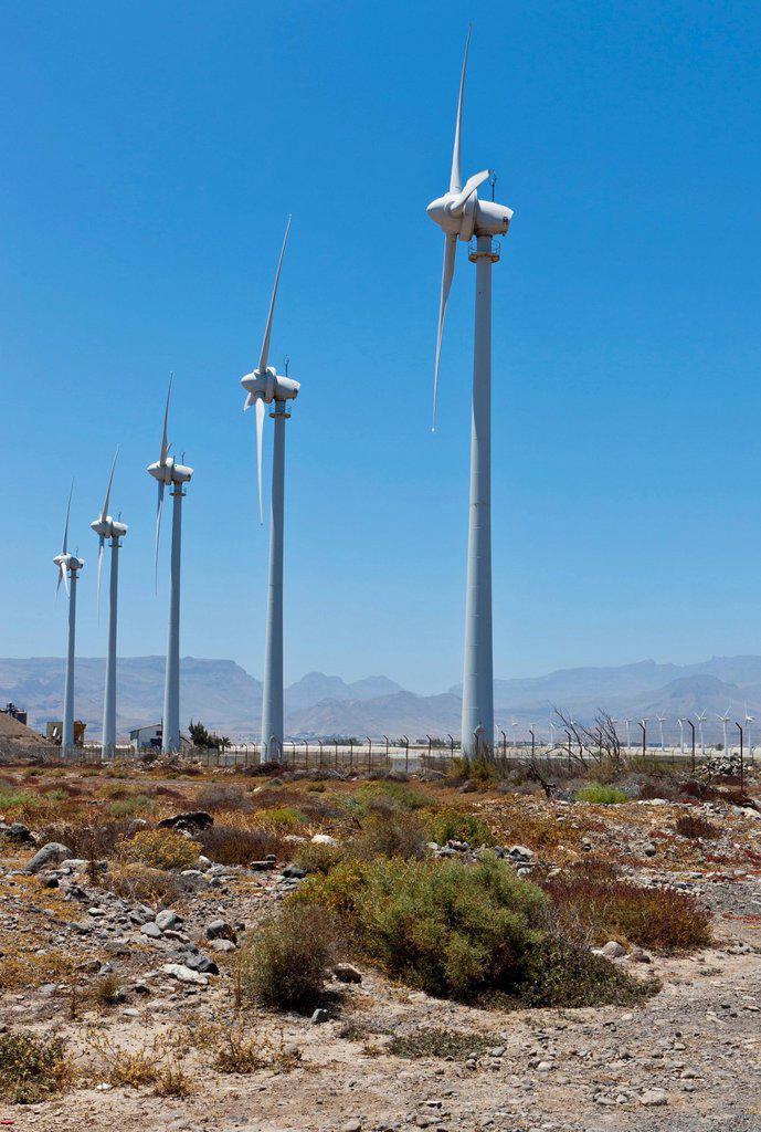 Wind turbines, wind power station, Pozo, Santa Lucía de Tirajana, Gran Canaria, Canary Islands, Spain, Europe : Stock Photo