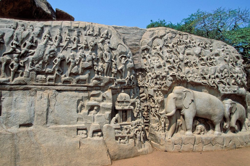 Stock Photo: 1848-723074 Bas_relief of the descent of Ganga or Arjuna´s Penance, Mamallapuram or Mahabalipuram, Tamil Nadu, South India, India, Asia