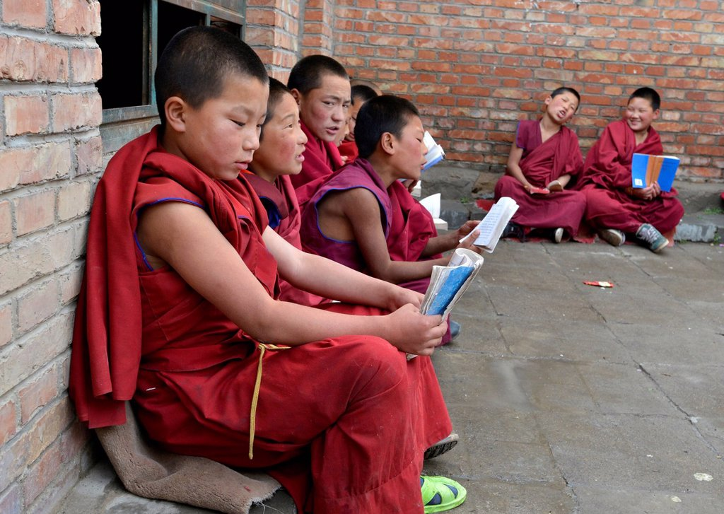 Stock Photo: 1848-726632 Young Tibetan novice monks in red robes reading religious texts, students at a Buddhist monastery, Tongren Monastery, Repkong, Qinghai, formerly Amdo, Tibet, China, Asia