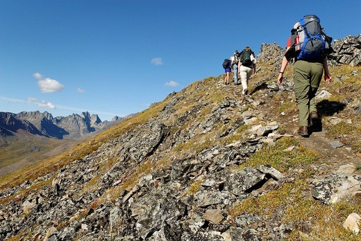 Stock Photo: 1848-73791 Hiker at Tombstone Territorial Park, Dempster Highway, Yukon Territory, Canada