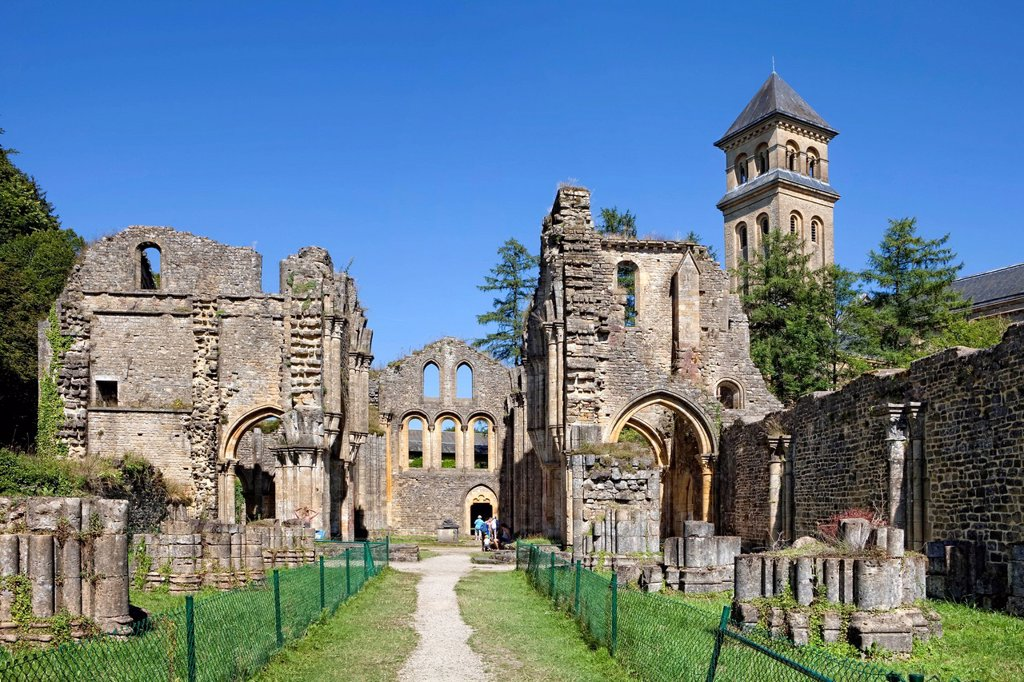 Stock Photo: 1848-744164 Ruins of the Cistercian Abbey of Orval, Abbaye Notre_Dame d´Orval, Villers_devant_Orval, Wallonia, Belgium, Europe