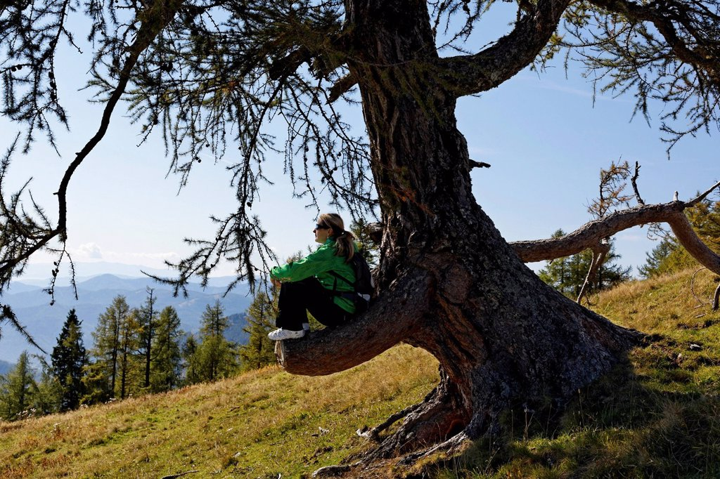 Stock Photo: 1848-757154 Female hiker sitting on a cut off branch, Buergeralm alp, Aflenz, Bruck an der Mur, Styria, Austria, Europe