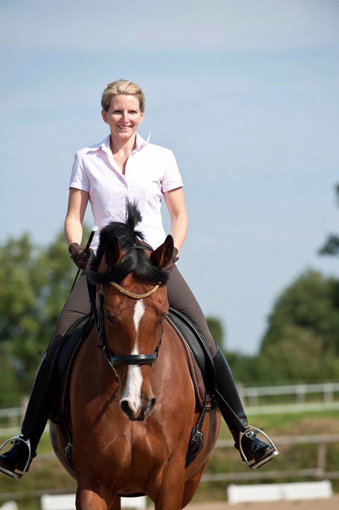 Woman riding a Hanoverian horse : Stock Photo