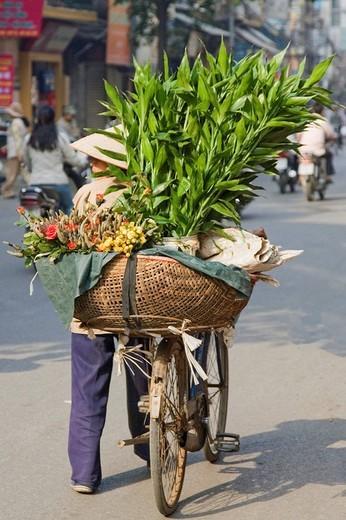 Street vendor, Hanoi, Vietnam : Stock Photo