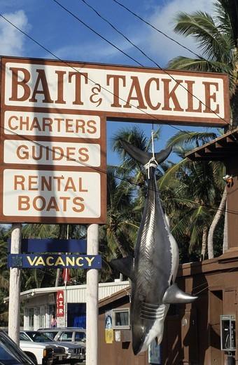 Eldorado for deep_sea angler, Islamorada, Florida Keys, Florida, USA : Stock Photo