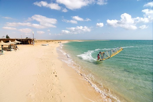 Stock Photo: 1848-80967 Windsurfer in Zaafarana, Gulf of Suez, Red Sea, Egypt, Africa