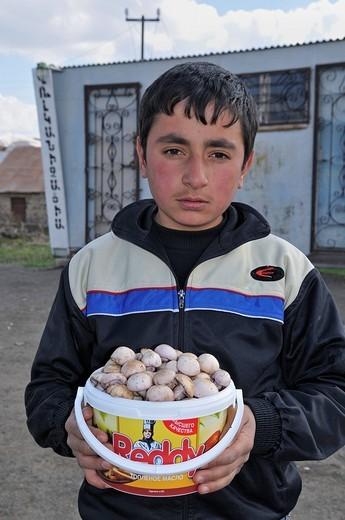 Armenian boy selling mushrooms in a poor mountain village near Sisian, Armenia, Asia : Stock Photo