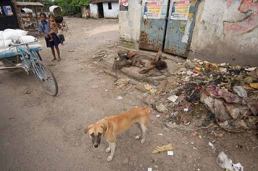 A homeless person on the streets in the slums of Topsia, people who can only feed themselves by begging or from the rubbish of other people, do not fit into the image of the booming emerging nation, nevertheless they can be found on every corner, Kolkata, : Stock Photo