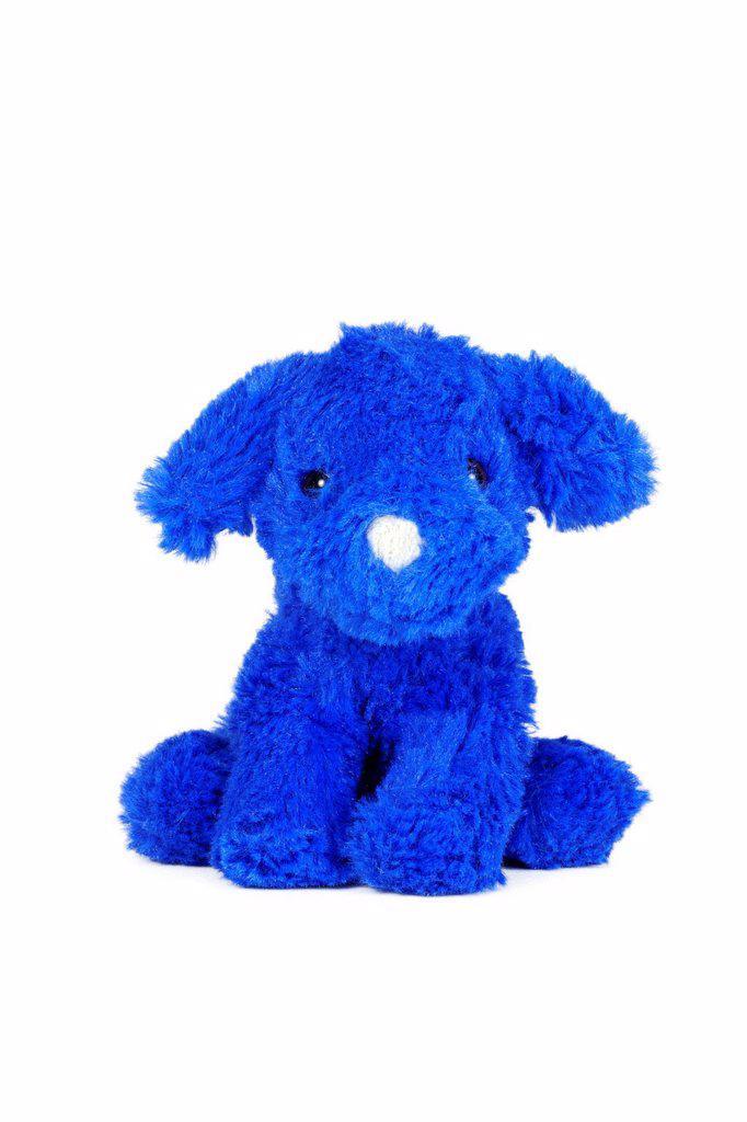 Blue dog, plush toy : Stock Photo