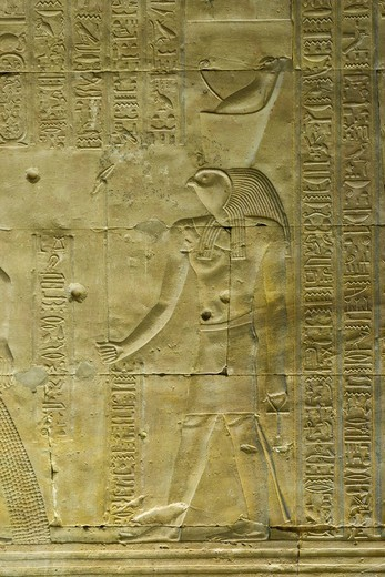 Hieroglyph depicting the god Horus, Temple of Horus, Edfu, Luxor, Nile Valley, Egypt, Africa : Stock Photo