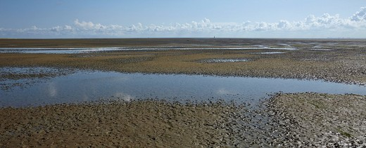 Puddles in mud flats, Mellum Island, Lower Saxony Wadden Sea National Park, UNESCO World Heritage Site, Niedersachsen, Germany, Europe : Stock Photo