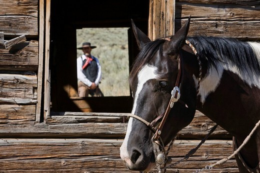 Stock Photo: 1848-89933 Cowboy in barn window, wildwest, Oregon, USA