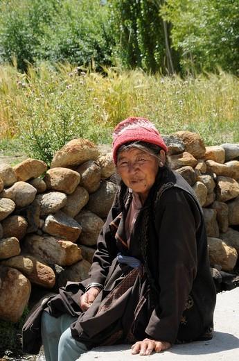 Stock Photo: 1848-90674 Farmer wearing traditional dress at the edge of a barley field at Phiyang Monastery, Ladakh, India, Himalaya, Asia
