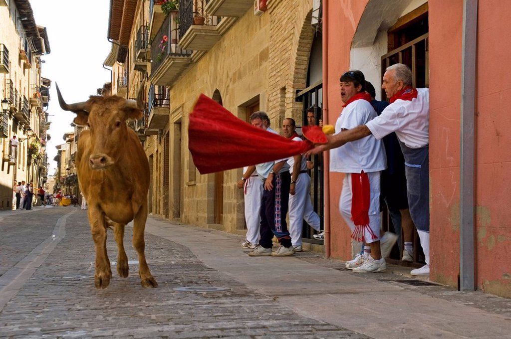 Stock Photo: 1848-91441 Fiesta and bull run in the streets of Puenta La Reina, Navarra, Spain