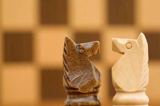 Stock Photo: 1848-91829 Two horses in front of chess board