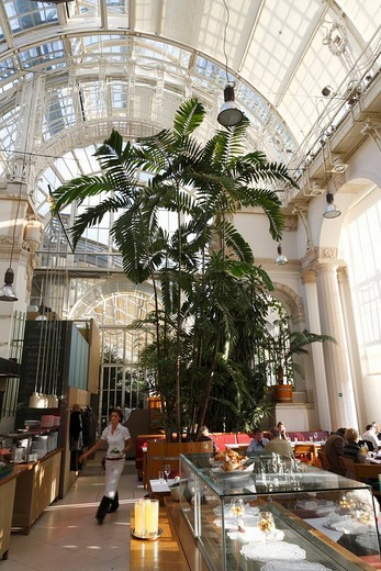 Café Palmenhaus in the Burggarten, Vienna, Austria, Europe : Stock Photo