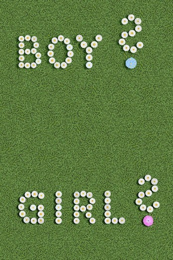Boy girl and question marks written with flowers is it a boy or a girl : Stock Photo