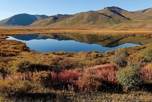 Stock Photo: 1848-97653 Lake in Tombstone Territorial Park, Dempster Highway, Yukon Territory, Canada