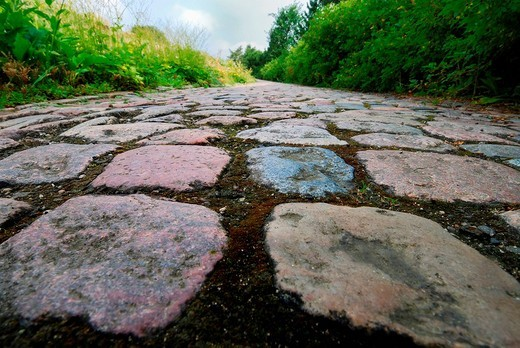 Cobblestone pavement, Kiel, Schleswig_Holstein, Germany : Stock Photo