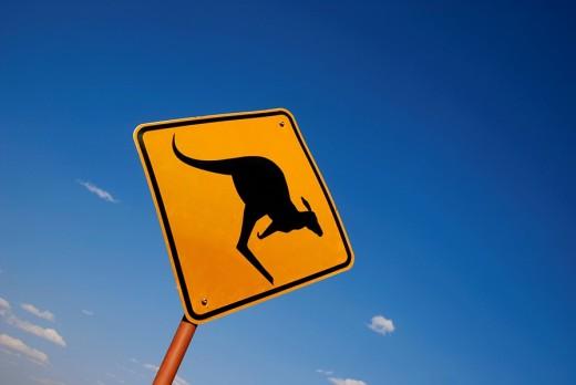 Road sign, beware of kangaroos, Outback, Uluru, Northern Territory, Australia : Stock Photo