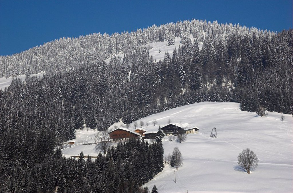 Snow covered alp at winter near Dienten, Salzburger Land, Austria : Stock Photo