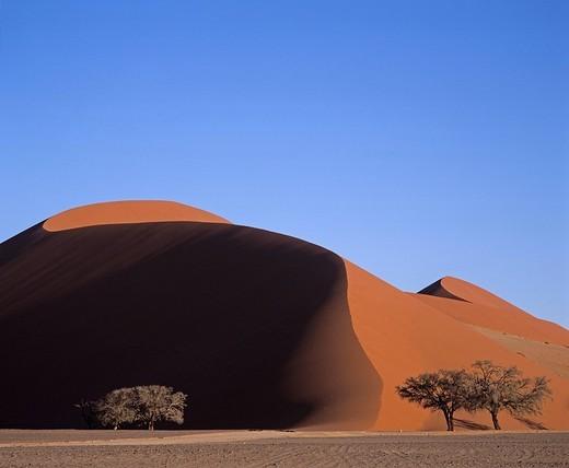 Dune 45 - Sossusvlei - Namib dessert - Namibia : Stock Photo