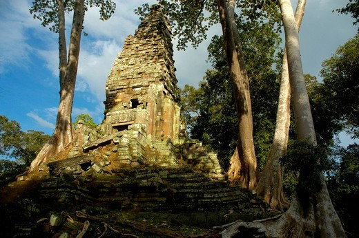 Khmer temple Preah Palilay grown in big trees Angkor Thom Siem Reap Cambodia : Stock Photo
