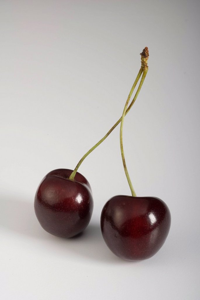 Pair of dark Sweetheart Cherries : Stock Photo