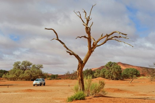Stock Photo: 1848R-280993 Sossusvlei in the Namib Desert, Namibia, Africa