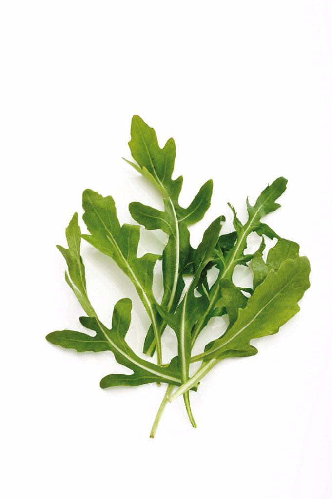 Stock Photo: 1848R-281077 Rocket, arugula