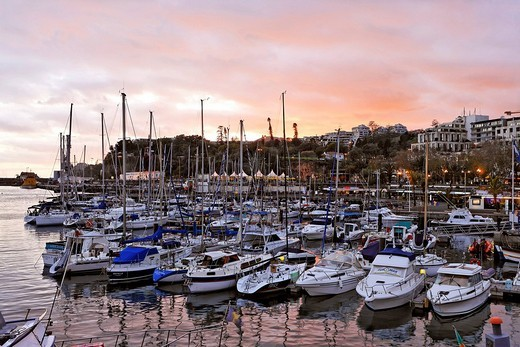 The harbour with sailing ships and yachts, Funchal, Madeira, Portugal : Stock Photo