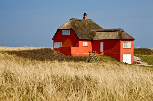 Lonely red house at the Danish west coast, Denmark : Stock Photo