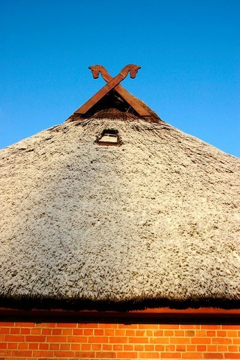 Stock Photo: 1848R-283722 Gable cross upon reed-covered ancient house