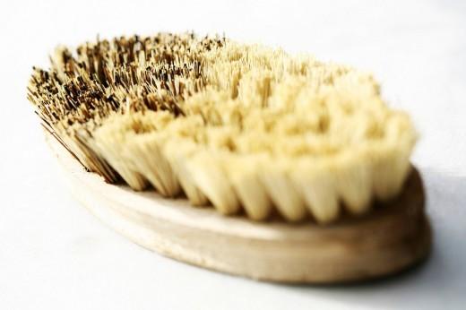 Stock Photo: 1848R-284676 Brush
