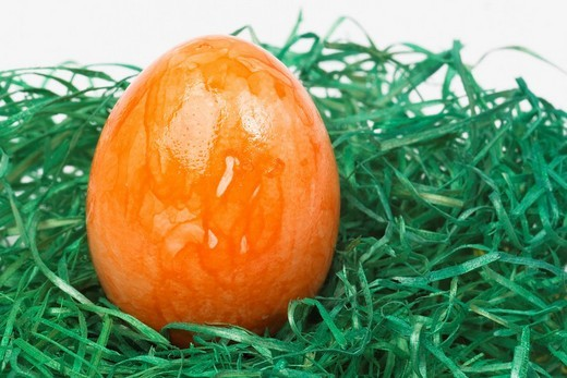 Orange painted Easter egg : Stock Photo