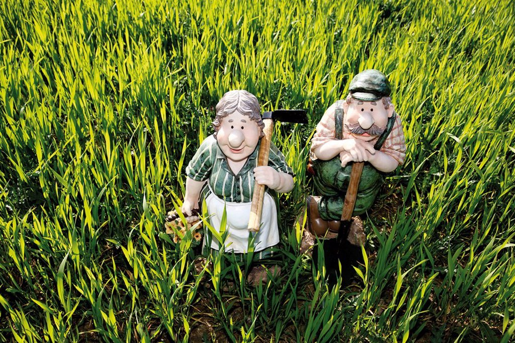Gardener, farmer, gardener´s wife, farmer´s wife figurines in a wheat field : Stock Photo